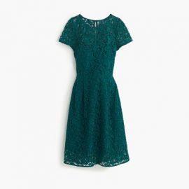 Alisa dress in Leavers lace in Green at J. Crew