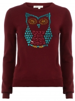 Bejewelled owl sweater at Dorothy Perkins at Dorothy Perkins