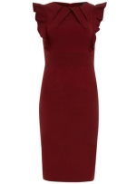 Burguny dress with frill sleeves at Dorothy Perkins