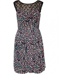 Butterfly print dress by Betsey Johnson at Betsey Johnson
