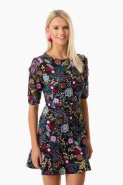 Celia Dress  Saloni at Tuckernuck