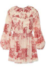 Chlo   - Pleated printed silk-chiffon mini dress at Net A Porter