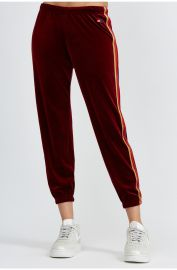 Classic Velvet Sweatpant by Aviator Nation at Bandier