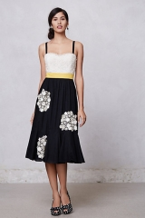 Dandelion Wish Dress at Anthropologie