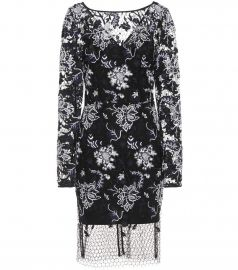 Diane von Furstenberg Embroidered lace dress at Mytheresa