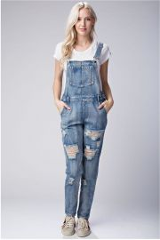 Distressed Denim Overalls by Honey Punch at Shoptiques