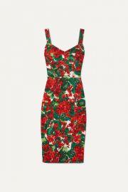 Dolce   Gabbana - Floral-print stretch-cady dress at Net A Porter