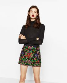 Embroidered Mini Skirt at Zara