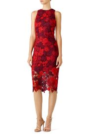 Floral Lace Sheath Dress by Alexia Admor at Rent The Runway