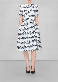 Graphic Streamer Dress at & Other Stories