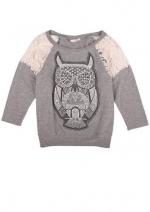 Grey owl sweatshirt with lace shoulders at Delias