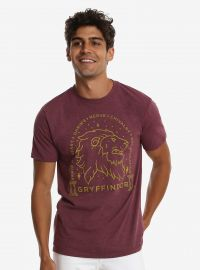 Harry Potter Gryffindor Sketch T-Shirt at BoxLunch