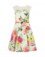 Iberis Floral Dress at Ted Baker