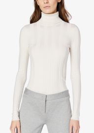 Inez Long Sleeve Turtleneck at Derek Lam