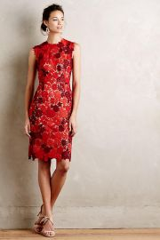 Lace Garden Pencil Dress at Anthropologie