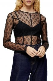 Lace Seam Sheer Top at Nordstrom