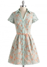 Lace button front dress at Modcloth