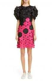 Laser Cut Floral Appliqué Dress by Paskal at Nordstrom