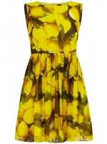 Lemon print dress at Dorothy Perkins