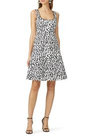 Leopard Dress by Nanette Lepore at Rent The Runway