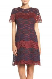 Maggy London Lace Fit   Flare Dress at Nordstrom