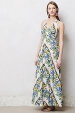 Marleys floral maxi dress at Anthropologie