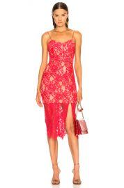 NICHOLAS Rubie Lace Bra Dress in Watermelon   FWRD at Forward