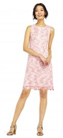 Nautilus Lace Shift Dress with Scalloped Hem at Adrianna Papell