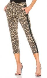Pam  amp  Gela Leopard Pant with Sash in Leopard from Revolve com at Revolve