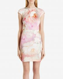 Quaro Rose on Canvas Dress at Ted Baker