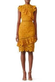 Reine Sheath Dress by Saylor at Rent The Runway