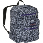 Sasha's zebra backpack at Amazon