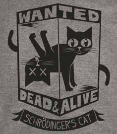 Schrodinger rsquo s Cat T-Shirt-Funny Wanted Dead or Alive shirt-Big Bang Theory at Amazon