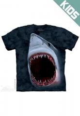 Shark Bite Tshirt at The Mountain
