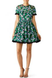 Shoshanna Green Daisy Dress at Rent The Runway