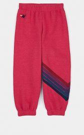 Stripe Sweatpants at Aviator Nation