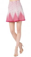 Toccara Skirt at Parker
