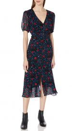V-Neck Dress with Sinched Waist in a Rose Print at Amazon