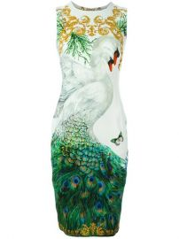 Versace Collection Swan And Peacock Print Fitted Dress at Farfetch