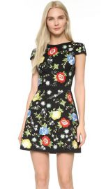 alice and olivia Ellen Embroidered Dress at Shopbop