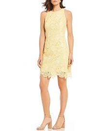 eliza j Lace Shift Dress at Dillards