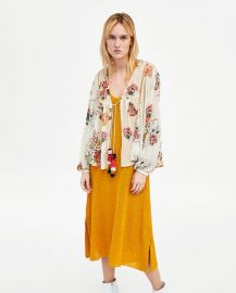 embroidered dotted mesh blouse at Zara
