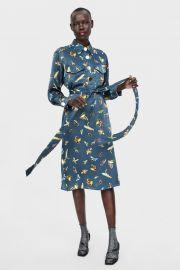 insect print dress at Zara