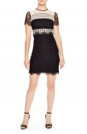 sandro Black  amp  White Lace Dress at Nordstrom