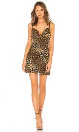 superdown Carmella Chiffon Mini Dress in Leopard from Revolve com at Revolve